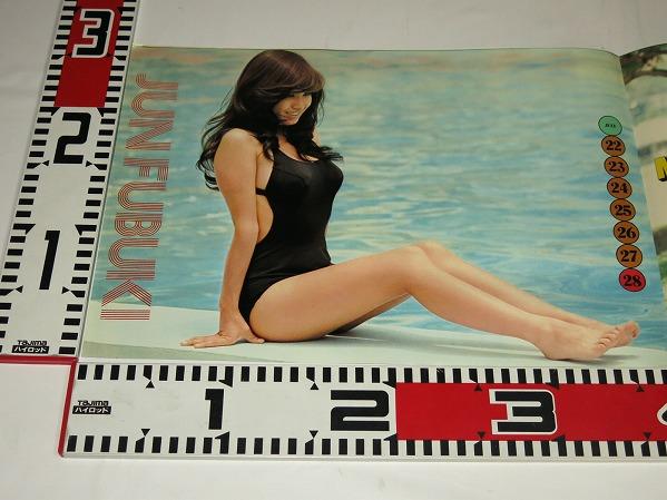 風吹ジュン水着ポスター