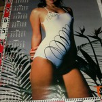 モデル名不明のポスター